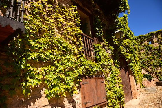 Tour de Vinos de Ribera del Duero desde Lerma