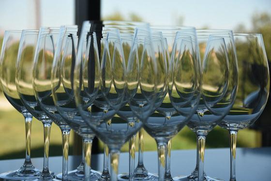 Ribera del Duero Wine Tour from Penafiel